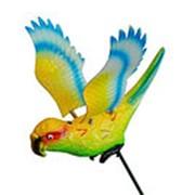 Декор для сада Попугай 12,5см L=60см (60) фото