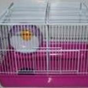 Клетка для хомяков с двумя отделениями, размер 33*24*24см фото