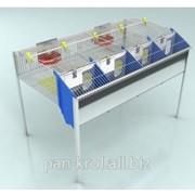 Клетка маточная 4 секционная на 4 кролематки с молодняком КМ-4С фото