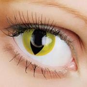 Линзы Crazy OkVision OKVision Crazy Yellow cat eye фото