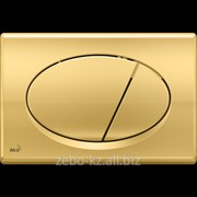 Кнопка управления (Золотая) M75 фото