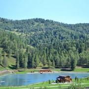 Проектирование и строительство искусственных водоемов фото