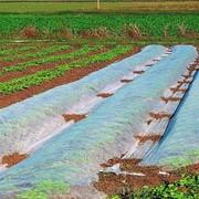 Агроволокно Premium-agro 23г/м2 1,6х100м фото