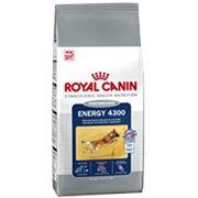Роял Канин Энерджи Royal Canin Energy 4300 фото