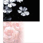 Визитки цветные фото