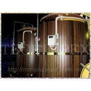 Мини пивоварня — пивзавод Blonder Beer от компании Techimpex. фото