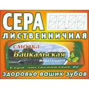 Сера живица смолка Байкальская жевательная 3 грамма наклейка фото