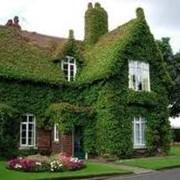 Озеленение домов