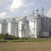 Зернохранилища PETKUS. ХРАНЕНИЕ И ПЕРЕРАБОТКА ЗЕРНА фото
