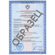 Сертификат промышленной безопасности фото