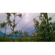Chromatinet Blue 40, затеняющая сеть для управления ростом растений голубого цвета фото
