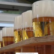 Пиво живое фото