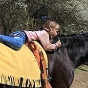ЛВЕ (Лечебная верховая езда) фотография