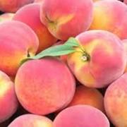 Персики свежие фото