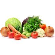 Семена овощей фото