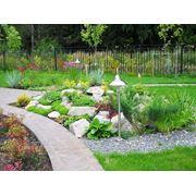 Озеленение и ландшафтный дизайн фото