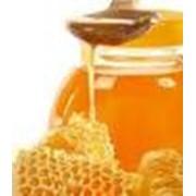 Мед липовый фото