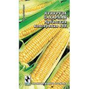 Семена Кукуруза Кубанская