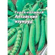 Горох овощной фото