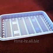 Лоток пластиковый Пл-01М фото