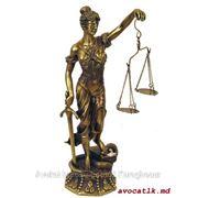Адвокат в Молдове специализирующийся в морском праве фото