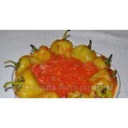 Перец печеный с томатной подливой фото