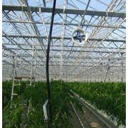 Системы выращивания на лотках фото