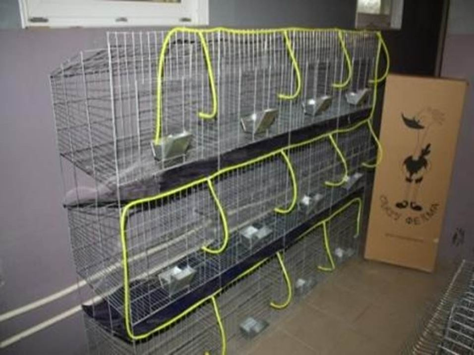 Клетка в квартире для собаки своими руками