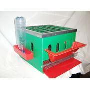 Пластиковая клетка для птиц фото