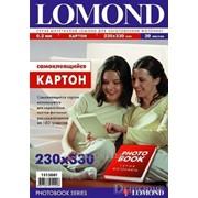 Картон самоклеящийся двухсторонний Lomond 230х330мм, 170 г/м2, толщина 0.2 мм, 20 листов 1513001 фото