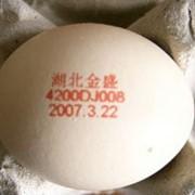 Оборудование для маркировки яиц фото