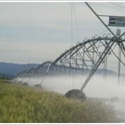 Техника для полива сельскохозяйственных угодий фото