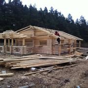 Изготавливаем срубы домов, бань, беседок любой сложности! фото