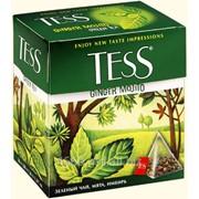 Чай имбирный Tess фото