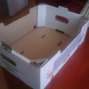 Гофрокартон и упаковка