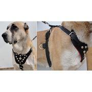 шлейка для собак универсальная буксировочная / дрессировочная фото