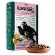 Падован / 12 корм для насекомоядных птиц с фруктами фото