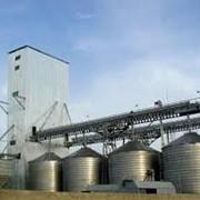 Силосы, Экспедиторские силосы, Зернохранилища, Yasar Group, Яшар Груп, Зернохранилища, зерносклады, Силосы для зерна – от 100 до 7500 т. фото