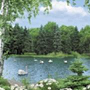 Фотообои Волшебное озеро