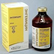 Энгемицин LA 100 мл фл
