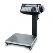 ВПМ-Ф печатающие фасовочные весы с отделительной пластиной (6кг, 15кг, 32 кг) фото