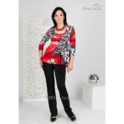 Блуза 1593 Красный цвет фото