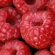 Свежие ягоды фото