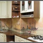 Скиналь, художественная роспись кухонного фартука фото