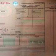 Путевые листы груз.авто Ф№1 (международные) фото