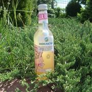 Безалкогольный напиток Rochester Organic Ginger Beer 330мл фото