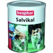 Salvikal, сальвикал, витаминная добавка, аналог СА-37, 500 гр. фото