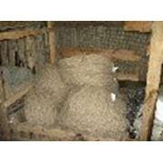 Веревка льнопеньковая, льняная, джутовая, диаметром 10мм-50мм фото