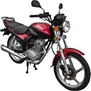 Мотоцикл ZID / LF150-13 фото