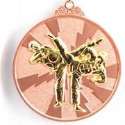 Медаль рельефная Таэквондо бронза фото